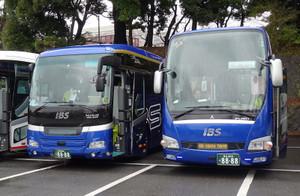 Ibs01
